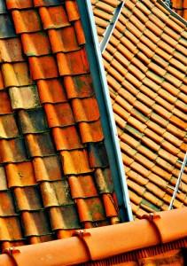 roof-crop